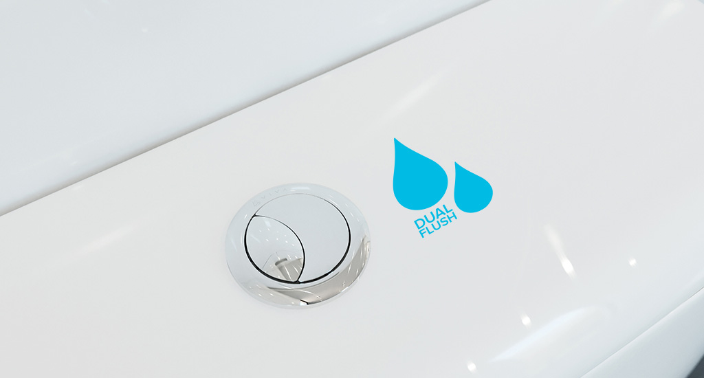 What is Dual Flush?